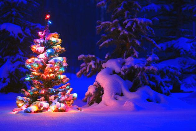 t3f2b57_schnee-weihnachten-neu[1]